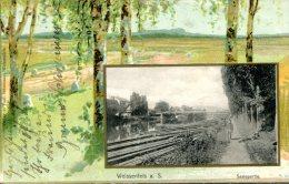 DE-ST: WEISSENFELS: Saalepartie - CPA écrite (1903) En Bon état - Weissenfels