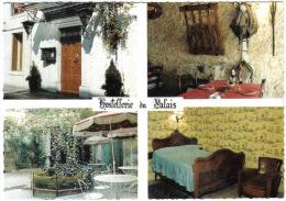 Carte Postale 34. Lunel  Hostellerie Du Palais    Très Beau Plan - Lunel