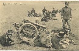 Armée Belge Mitrailleuse Maxim Attelée  Attelage 3 Chiens Dogcart 3 Dogs Nels  Au Repos - Material