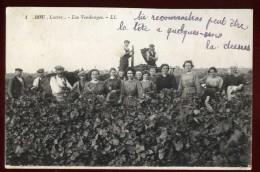 Cpa  Du 45  Bou Les Vendanges ... Vin Vigne Vigneron   ARF2 - Non Classés