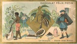 Chromos Réf. C344. Chocolat Félix Potin - Le Cacoyer - Chocolat, Cacao, Bonbons - Chocolat