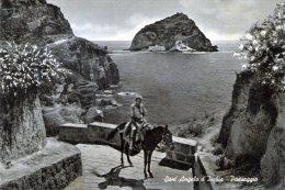 "Bellissima Cartolina  Anni 50       "" Sant ' Angelo D'Ischia - Paesaggio "" - Napoli (Naples)"