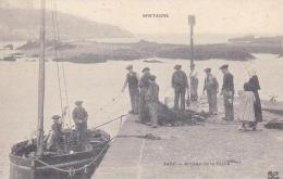 DOUARNENEZ Arrivée De La Pêche (MTIL ) - Douarnenez