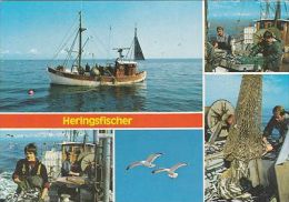 HERRING FISHING MULTI VIEW - Fishing