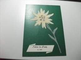 Stella Alpina In Rilievo  Con Tessuto Saluti Da Praly - Cartoline