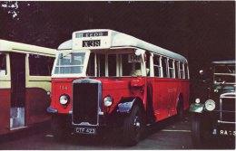 Bus Postcard Lancashire United Transport 114 Leyland Tiger TS8 Roe CTF423 - Busse & Reisebusse