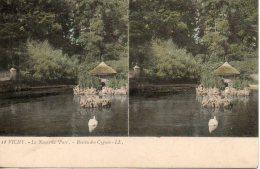 03. Vichy. Le Nouveau Parc. Bassin Des Cygnes - Cartes Stéréoscopiques