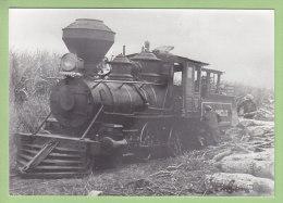BRESIL : Traction Des Trains De Cannes à Sucre, Locomotive Baldwin 2.2.0. Octobre 1973. - Trains
