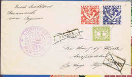 Suriname: Airmail Cover 1930 First  Flight To Via Cayenne To The Hague, Cancels Inconnu And Retour. RRR - Suriname ... - 1975