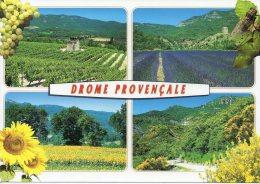 CP - PHOTO - DROME PROVENCALE - CELLARD - IMAGES DE LA DROME - France