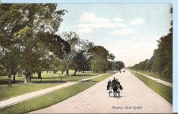 Southern Ireland Postcard - Phoenix Park, Dublin    BH1102 - Dublin