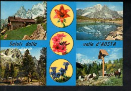 "H1387 Saluti Dalla Valle D' Aosta - Fiori, Fleurs, Flowers - Vda 10 Ediz. Enrico - Serie "" Valle D' Aoste "" - Altre Città"