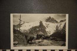 CP, 05, Oratoire Du Chazelet Et La Meije N°5611 48  Edition GEP Vaches Et Berger RARE - France