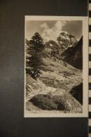 CP, 05, Route Du Grand Belvedere Et Mont Viso  N°8500 7  Edition GEP  RARE - France
