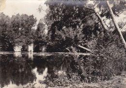 Cp , 49 , MONTREUIL-BELLAY , Ruines Du Vieux Pont Sur Le Thouet - Montreuil Bellay