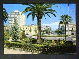 PUGLIA -FOGGIA -SAN SEVERO -F.G. LOTTO N°294 - Foggia