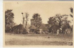 Senegal Village, Afrique Occidentale Francaise Colony Era, C1920s/30s Vintage Postcard - Senegal