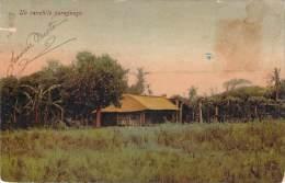 Paraguay - Un Ranchio Paraguayo (colorisée) - Paraguay