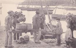 DOUARNENEZ  Armement D'un Bateau Pour La Pêche à La Sardine - Douarnenez