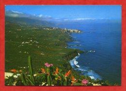 * ESPAGNE- TENERIFE-Litoral De La Zona Norte (Carte Voyagée) - Tenerife