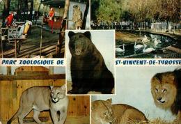 CPSM   SAINT VINCENT DE TYROSSE        Le Parc Zoologique  En Multivues - Saint Vincent De Tyrosse