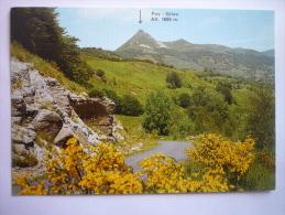 Les Monts Du Cantal - Le Puy Griou (15 ) - France