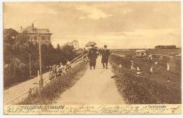 Niedersachsen - CUXHAVEN - Deichpartie +++ To Weissenberge, Hagen, 1909 ++ Carl Bostedt & Co., Cuxhaven +++ - Cuxhaven