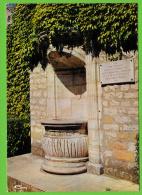 VILLEFRANCHE SUR SAONE / LA FONTAINE / Date Manuscrite Au Dos: 22/05/1977 - Monuments