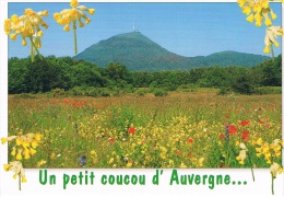 Un Petit Coucou D'AUVERGNE - PUY DE DOME, Volcan D'Auvergne, 1er Plan Prairie Avec Fleurs - 2 Scans - Auvergne