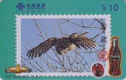 Télécarte Chine - Oiseau HIBOU Chouette Timbre - OWL Bird Stamp Phonecard - EULE Telefonkarte & COCA COLA - 2305 - Eulenvögel