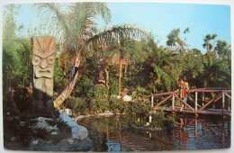 USA - Tiki Gardens - A Beautiful Wahini Gazes ... Between Clearwater And St. Petersburg - Animée / Lived Up - Clearwater