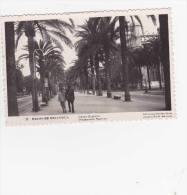 Palma De Mallorca - Palma De Mallorca
