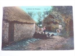 """AGRICULTURE ELEVAGE PAYSANS """"LE RETOUR DU TROUPEAU  """" E.L.D CPA 1907 COULEUR   MOUTONS VACHES ECURIE TOIT DE CHAUME - Bauern"""