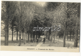 CHAGNY - PROMENADE DES MURIERS - Chagny