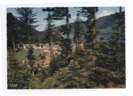 88--Le Terrain De Camping De Ramberchamp -TBE - RECTO/ VERSO  ---E8 - France