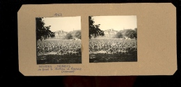 Photographie Steréroscopisue 3D : BEYNAC Le Château Derrière Les Noyers Et Plantations De Tabac  Dordogne 1952 - Stereoscopic