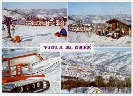 VIOLA ST GREE, VEDUTINE, VG 1971, FINESTRELLE - Cuneo