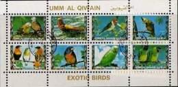 X UMM AL QIWAIN FOGLIETTO EXOTIC BIRDS NUOVO - Pappagalli & Tropicali