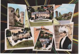 Champtocé -  Multivues - France