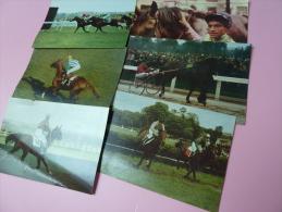 6 Calendriers des Courses de chevaux 1967  Vin Postillon Freddy Head Louis SAUVE  JC DESSAINT  A FAURE
