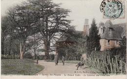 AVRANCHES -  Jardin Des Plantes -Le Grand Cédre -Le Couvent Des Ursulines - Avranches