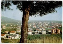 GRUMELLO DEL MONTE, PANORAMA, VG 1972   **** - Bergamo
