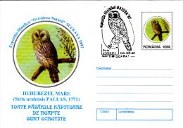 BIRDS, OWLS, 4X COVER STATIONERY, ENTIERE POSTAUX, 1997, ROMANIA - Eulenvögel
