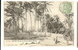 "1904 Tunisia Gafsa ""Route De Tozeur Dans L'Oasis"" Ppc/cpa Used Camp Serviere To France - Tunisia"