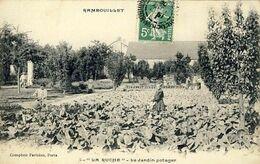 78 - Rambouillet - La Ruche - Le Jardin Potager - Rambouillet