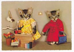 Fantaisie - Deux Chats  En Costumes De Femmes Faisant Des Achats à L'épicerie (montage Photo) Pas Circulé, Cpsm 10x14.4 - Cats