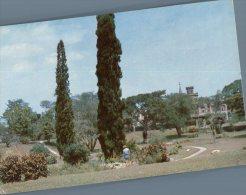 (101) Bristish West Indies - Port Of Spain Royal Botanic Gardens - Vierges (Iles), Britann.