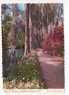CP 10*15/N553/CHARLESTON MAGNOLIA PLANTATIONS AND GARDENS - Charleston