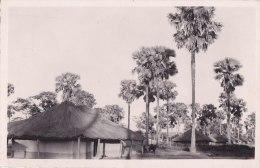 ¤¤  -  135   -  REPUBLIQUE CENTRAFRICAINE  -  OUBANGUI    -  Village Mandja   -  ¤¤ - Centrafricaine (République)