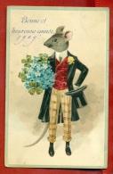 RAT VINTAGE EMBOSSED PC. W51 - Tierwelt & Fauna